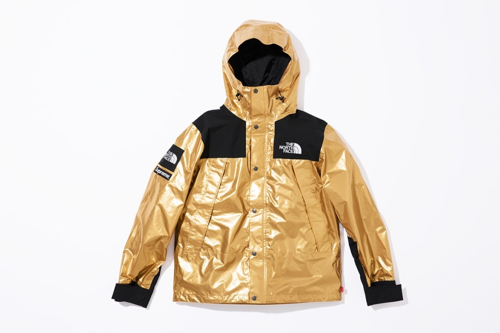 Metallic Mountain Parka